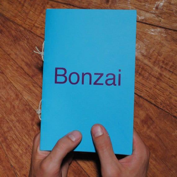 Bonzai - A Zine About What Happens Next
