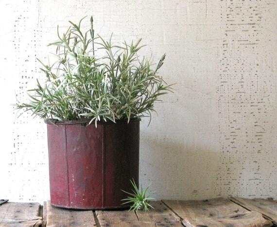 small red sap bucket - urban farmhouse style