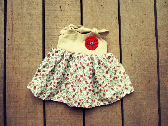 Shabby Chic vintage premie-newborn 0-3 months dress coming home outfit