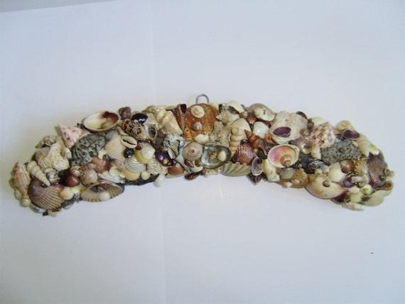 Sea Shell Wall Hanging