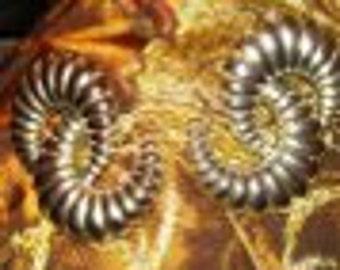 Silver Swirl Designed Style Earrings..Nice Large Clip On
