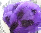 Jewel Toned Purple Pheasant Feather Fascinator