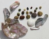 Beach in a Box Gift Set for Beach Lover Abalone, Beach Stones, Sea Shell, Sand
