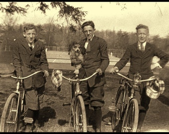 Old Sepia Image, Three Young Men on Bikes with Hats and a Dog, 20s or 30s, 12x9