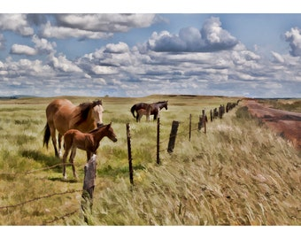 Mare and its Foal near a Road to the Clouds, Horses, Countryside, Art Print