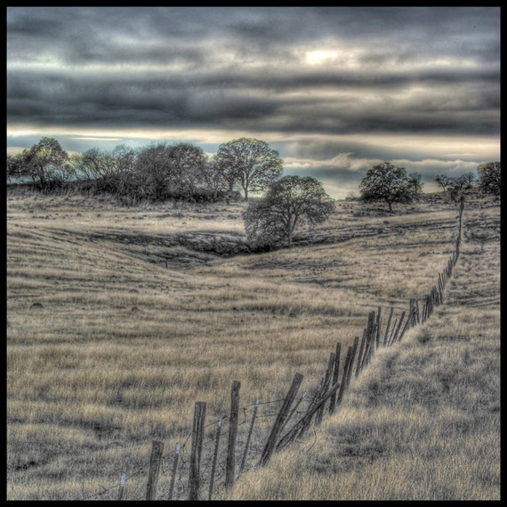 Horizons: A Rickety Fence cuts a Path up a Golden Hill towards Trees and Clouds 10x10