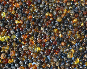 Polished Baltic Amber beads with drilled hole. 100 pcs