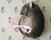 Sale...Taxidermy Brown Mouse Brooch