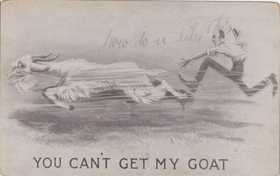 You Can't Get My GOAT, Vintage Postcard, 1910s, Stamped, Postmarked and Written