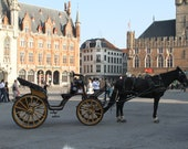 Art photography of carriage and horse in Brugges Belgium, ancient architecture
