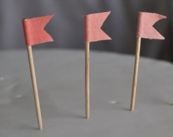 Coral Peach Ombre Cupcake flag toppers - Party picks set of 15