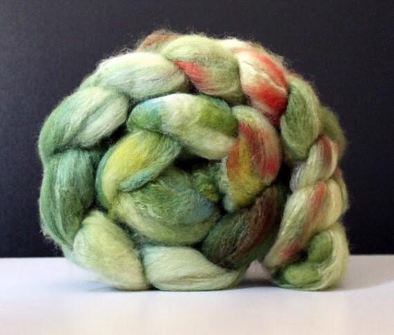 BFL/Tussah silk top 100g - Apple Tree
