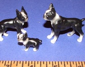 Vintage Miniature Boston Bull Terrier FamilyFamily
