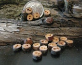Teeny weeny wood buttons, 18 in total, made of juniper wood 3/16 (5mm) (plus/minus)