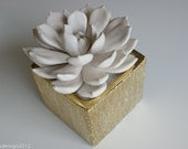 Large White Rosette Succulent Sculpture in Etched Gold Container of Sparkling White Sand