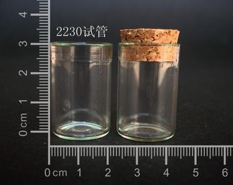 5pcs Small Clear Glass Bottle Vial Charm Pendant 22x30mm- Glass Bottle with Cork and Silver Eyehook