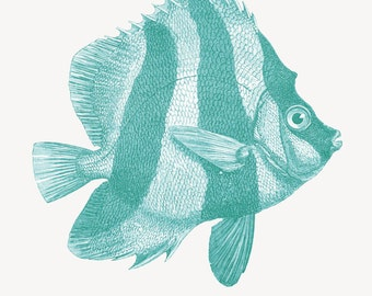 Fish Print  from a  Vintage Illustration Heniochus Nautical Decor