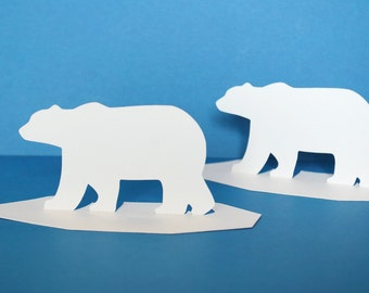 Polar Bear on Ice Cap  Place cards Set of 12
