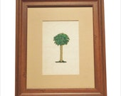 A limited edition serigraph, hand pulled, of Palmetto tree (palm), complete with matte, glass, and frame.