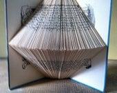 The Hardy Boys' Detective Handbook Folded Book Art