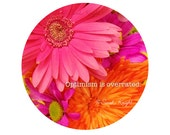 Optimism is overrated - signed art motivational print by Sarah Knight - circle graphic photography pink orange daisies