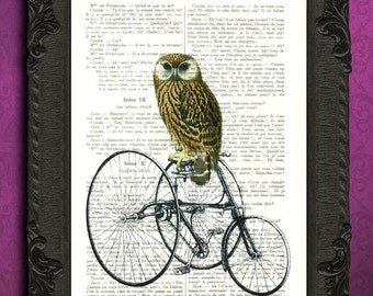 Owl on bike art antique illustration of barn owl printed on dictionary paper