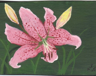 ACEO- Original Art Painting-Oriental Lily, Rubrum Lily- By the Artist
