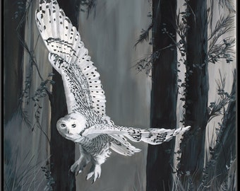 "Ghost in Torrit Woods 12"" x 18""  Snowy White Owl Print"