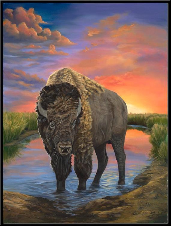 "American Bison 12"" x 16""  Buffalo print"