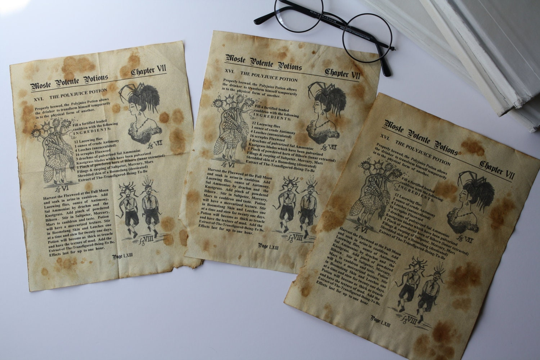 El herbario de las hadas 776 507 - 58k - jpg cariciasencuentos