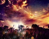 iPhone Print Photography Sunset Photograph Orange Yellow Stars (8 by 8 print) Nature Fine Art Clouds