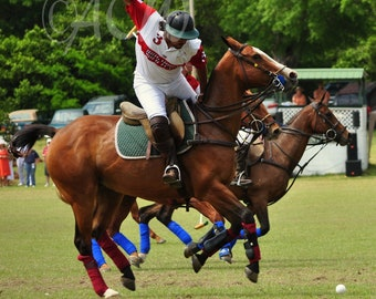 Polo player,Camden, South Carolina (PR) (16 x 20 canvas)