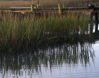 Dock and marsh on Shem Creek, Mt Pleasant, South Carolina (PR)  (canvas)