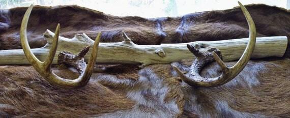 Deer Antler Gun Rack Hat Rack on Driftwood