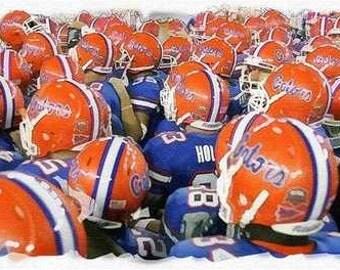Rare Florida Gators Art NCAA Football Champions only 50