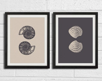 Sea Shell Wall Art - Home Decor Set 2 8x10 Print