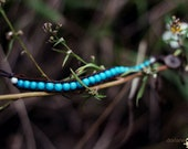 Blue Horizons Bracelet - Beautiful and original blue beads, brown cord and an asian style good luck clasp