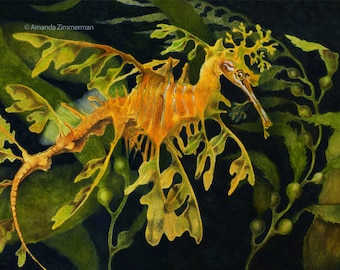 Leafy Seadragon (20% of sales goes to help our oceans)