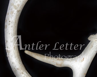 SALE-Letter G, Antler, Whitetail Buck Shed, Photography, Alphabet, Hunting