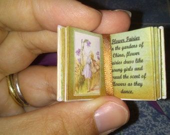Dolls House 12th Scale Fairy book download