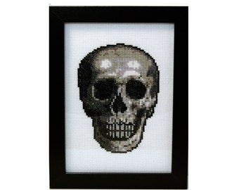 Anatomical Skull - Framed Cross Stitch