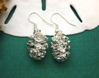 Pinecone Earrings, Sterling Silver, Real Pine Cones, Silver Pinecones, Pine Cones, PC28