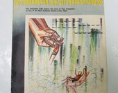 Vintage Miracle at Niagara Souvenir Magazine Newspaper Reprint, 1960