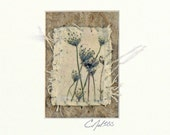 Mixed Media ACEO Indigo Prairie Song -Blue Flower Cottage Decor Queen Anne's Lace