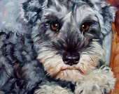 Big Mini Schnauzer, custom Pet Portrait Oil Painting, 10x10""