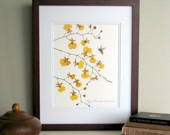 Pressed flower print, 11x14 double matted, Tiger Orchid with bee, golden floral, wall decor no. 007