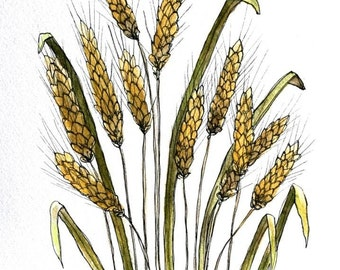 "Wheat still life watercolor 8"" x 12""  original small format art painting pen and ink"