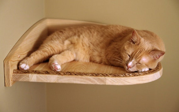 Mountain Cat Climbers, Solid Wood Shelves for Cats - Set of Four