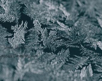 Frost 12x8 Fine Art Print - Snowflake, Winter, macro