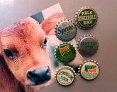 GREEN 6-Pack Bottle Cap Magnets Vintage Soda POP / repurposed bottlecaps / new old stock